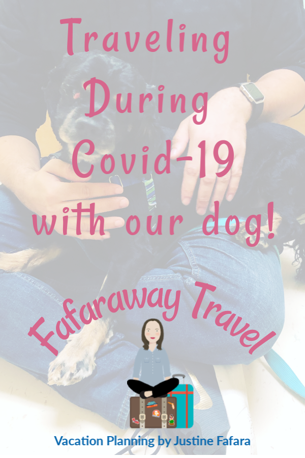 traveling during covid with our dog pin image
